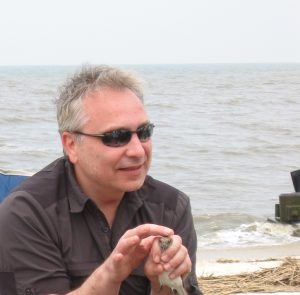 Image of Dr. Bour on a recent sampling trip to Delaware Bay, New Jersey to contribute to CEIRS avian surveillance efforts. He described the impressive dedication of volunteers and engagement of the community.